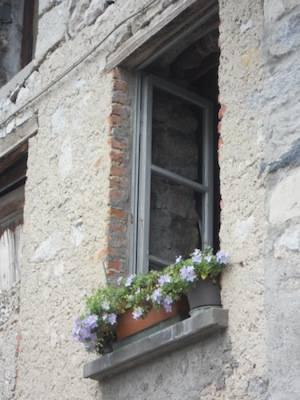Vecchia finestra !