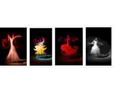 mostra artigianato artistico ville ponti tricolore fotografia