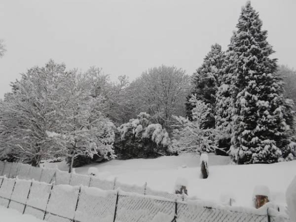 Domenica con la neve dei lettori 2 (inserita in galleria)