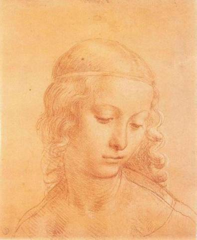 Leonardo  (inserita in galleria)