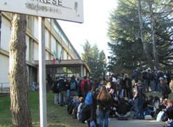 terremoto scuola daverio