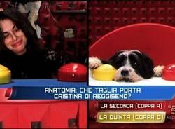 Grande Fratello, la del Basso contro un cane: vince il cane (inserita in galleria)