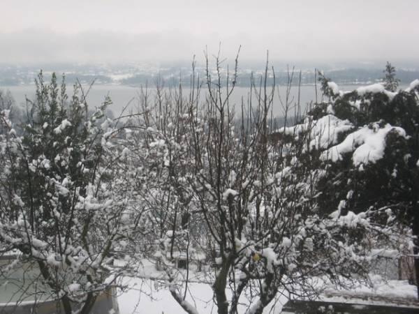 La neve a Oltrona (inserita in galleria)