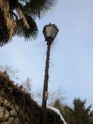 lampione rotto casciago