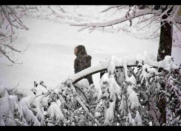 Neve a Bologna (inserita in galleria)