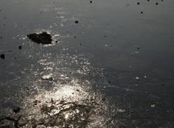 Schiranna, sul lago ghiacciato (inserita in galleria)