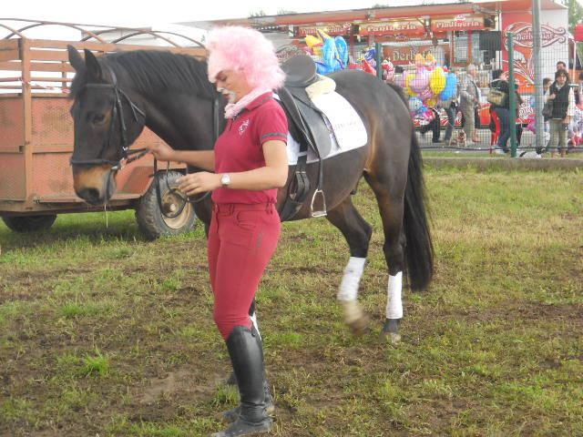 La Pantera e il Cavallo !
