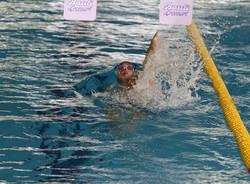 Nuoto protagonista a Busto Arsizio (inserita in galleria)