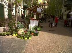 Pipe e fiori a Varese (inserita in galleria)