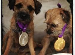I campioni olimpici mostrano le loro medaglie su Twitter (inserita in galleria)