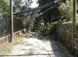 I danni del temporale a Cazzago Brabbia (inserita in galleria)