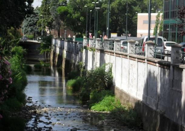 arnetta arno gallarate torrente