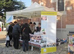 Colori, Natale e allegria al mercatino di Barasso (inserita in galleria)