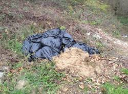 Eternit e spazzatura nei boschi a Tradate (inserita in galleria)