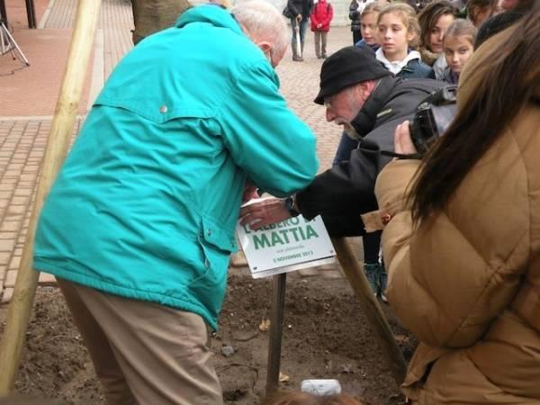 A Cantello, la festa dell'albero di Mattia (inserita in galleria)