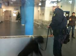 Equitalia, il cane antibomba (inserita in galleria)