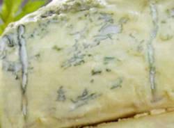 formaggio gorgonzola apertura