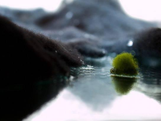 I paesaggi islandesi ricreati con la lana  (inserita in galleria)