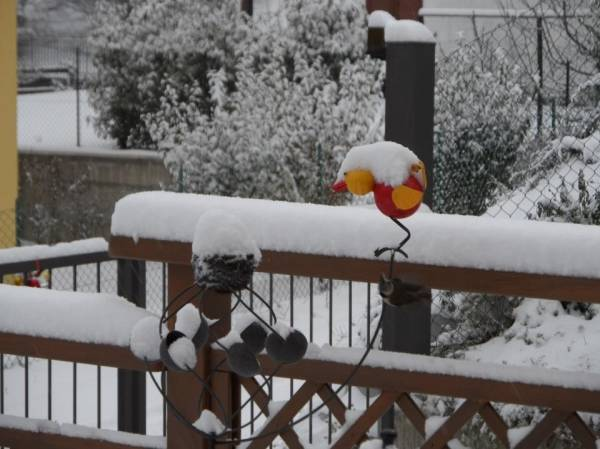 La neve dei lettori - 6 (inserita in galleria)
