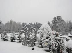 La neve dei lettori - 8 (inserita in galleria)