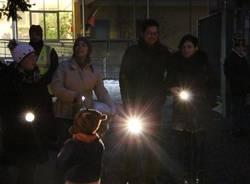 La protesta delle lampadine a scuola (inserita in galleria)