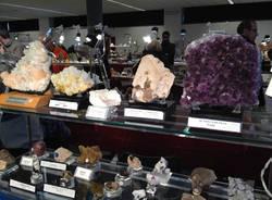 Nel mondo dei minerali e dei fossili (inserita in galleria)