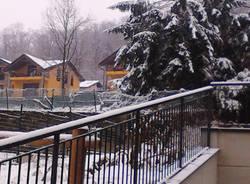 La neve dei lettori  (inserita in galleria)