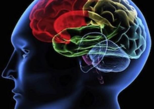 mente cervello neuroscienza apertura