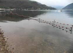 """Gara di pesca, si prepara il """"campo"""" (inserita in galleria)"""