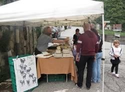 """Il mercatino """"Arti e mestieri"""" di Fogliaro (inserita in galleria)"""