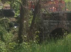 L'auto portata in strada dalla gru (inserita in galleria)