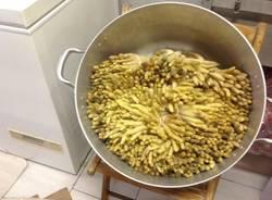 Nelle cucine della festa dell'asparago (inserita in galleria)