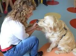 pet therapy apertura