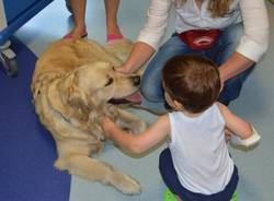Pet Therapy in Pediatria (inserita in galleria)