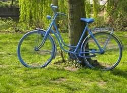 bici bicicletta verde natura