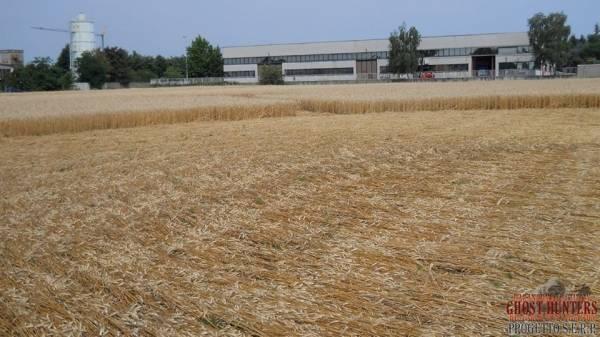 Cerchi nel grano a Bienate (inserita in galleria)