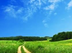 cielo estate foto