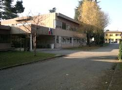 scuola primaria cedrate