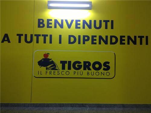 Tigros nel #141tour (inserita in galleria)