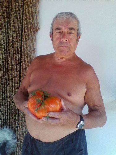 Il maxi pomodoro di Renato