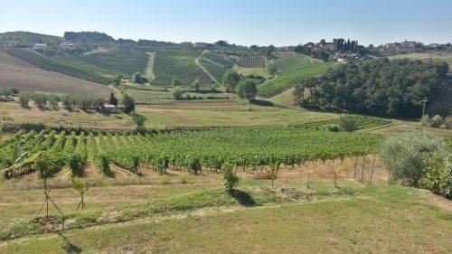Il mio buongiorno...dalla meravigliosa terra Toscana