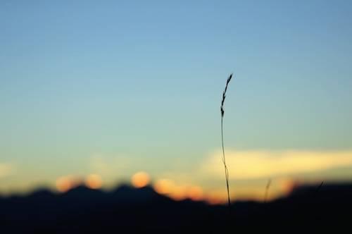 tramonto al belvedere-irma