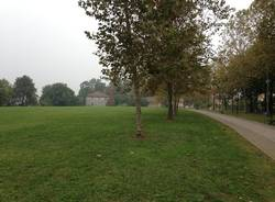 Cassano magnago: i luoghi parco della Magana autunno