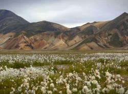 Iceland - l'ultima isola (inserita in galleria)