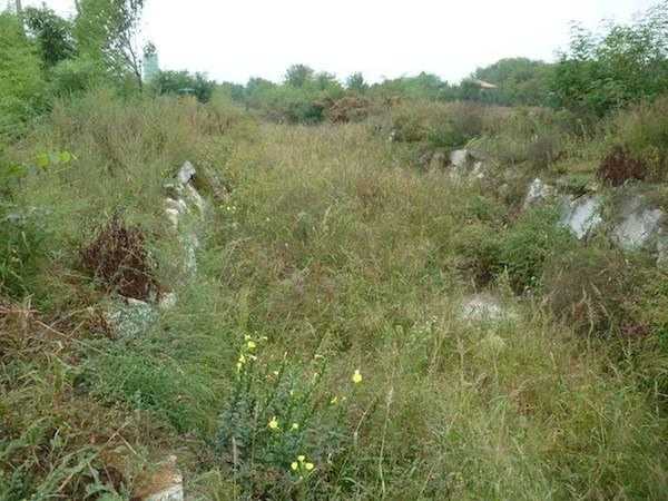 Le condizioni del torrente Rile a Cassano (inserita in galleria)