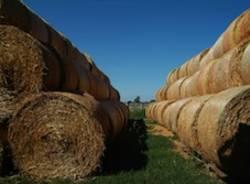 premi concorso fotografia bcc agricoltura fattoria