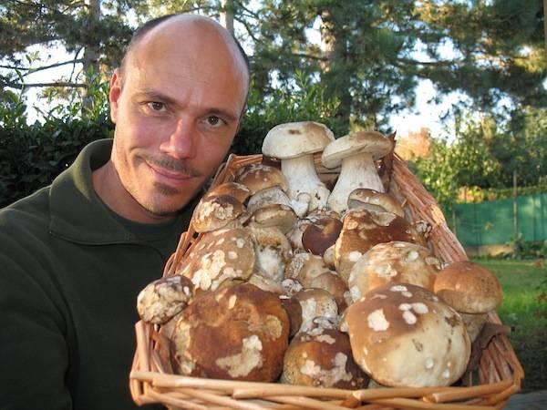 Ultimi funghi (inserita in galleria)