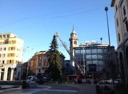 Illuminato l'abete di piazza Montegrappa (inserita in galleria)