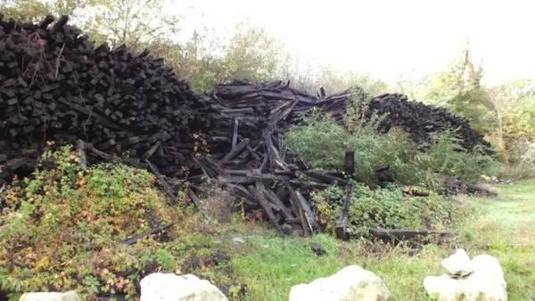 Rifiuti abbandonati in Via Dalmazia (inserita in galleria)