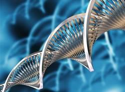 biotecnologie apertura ville ponti